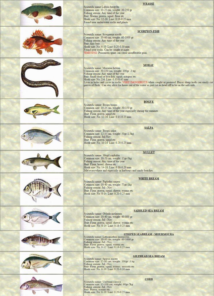 Pg2 Fishing(Angling)